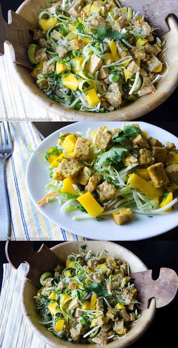 Vietnamese Tempeh Salad with Mango! A healthy, light salad that's gluten free and vegan.