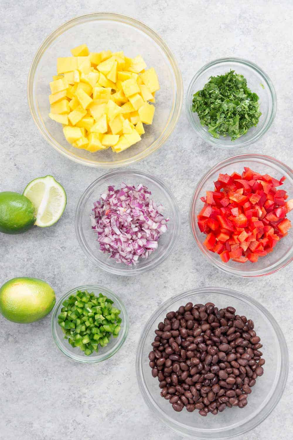 components for making black bean and mango salsa