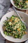 Green Bean, Quinoa and Sprout Salad! This lettuce-free salad is perfect for lunch or a light dinner. Green beans, broccoli, quinoa, carrots and sprouts tossed in a fresh dressing. Vegan and Gluten-Free | www.delishknowledge.com