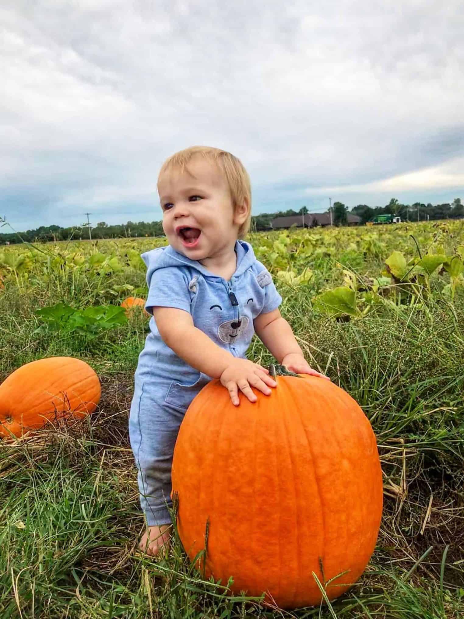 Picking Pumpkins at Eckert's Farm