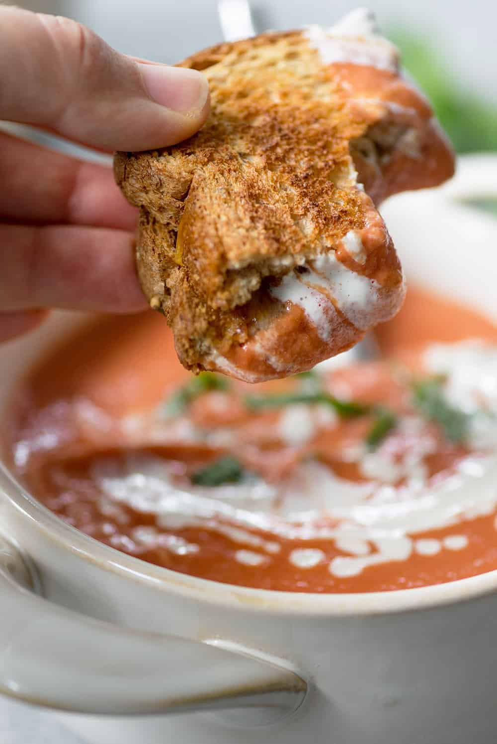 vegan tomato soup with grilled cheese