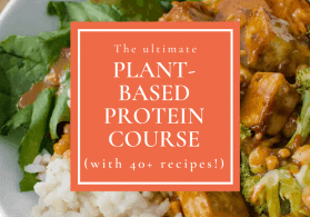 Free Plant-Based Protein Course (with 40+ recipes)