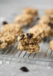 Tropical Trail Mix Breakfast Cookies! These cookies are lightly sweetened, packed with fiber and nutrients and perfect for breakfast or on-the-go snacking. Vegan and easily gluten-free. | www.delishknowledge.com