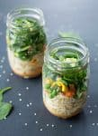 Vegan Red Curry Cup O'Noodles! Homemade lunch in a jar! Just add hot water and you've got your own DIY Cup O'Noodles. Red Curry, Coconut, veggies, noodles and herbs. | www.delishknowledge.com