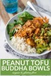 vegan buddha bowl with crispy peanut tofu