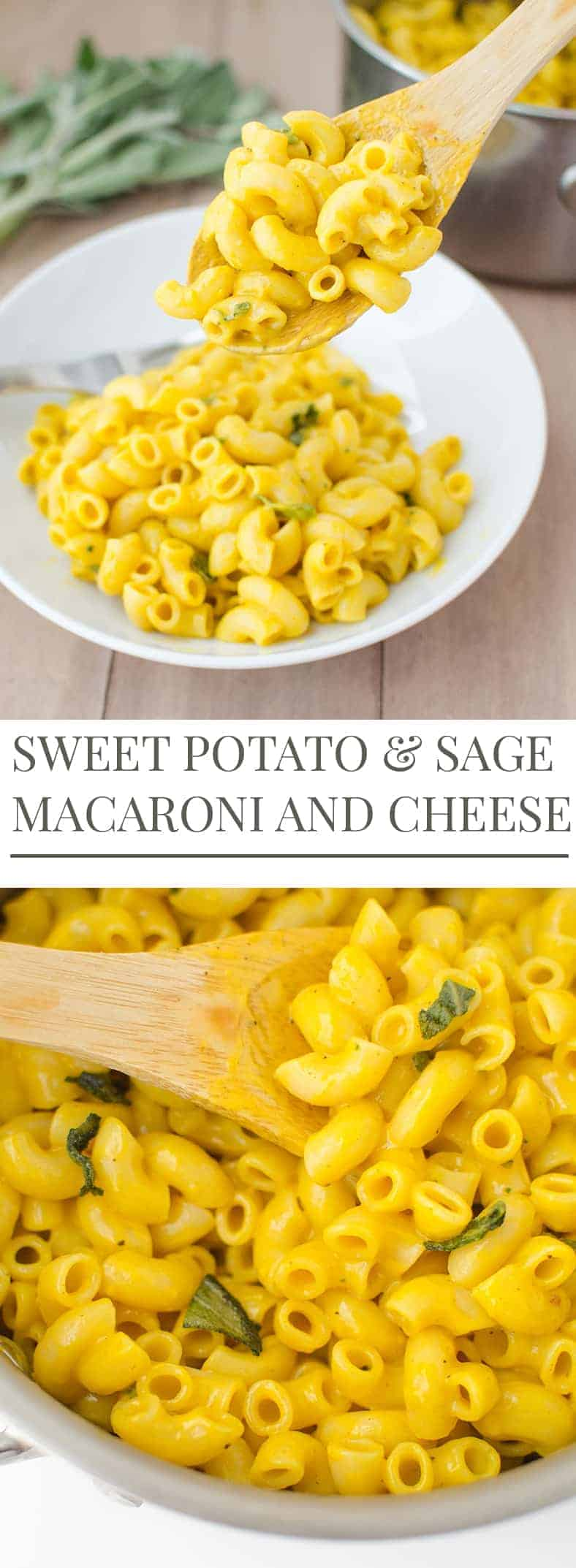 Sweet Potato & Sage Mac and Cheese. A big bowl contains only 380 calories, 8 grams of fat, 10g of fiber and 14 grams protein. Not bad for a bowl of hearty mac and cheese! Cheesy, savory, and ready in 30 minutes or less. | www.delishknowledge.com