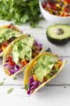Tropical Tofu Tacos with Mango Salsa! Jerk seasoned tofu with quick mango salsa, shredded cabbage and sliced avocado. | www.delishknowledge.com